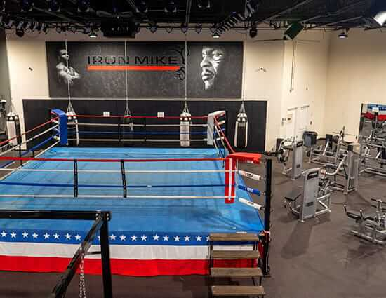 Boxing Ring and Training Area
