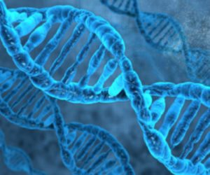 Genetics Play a Large Role In Addiction