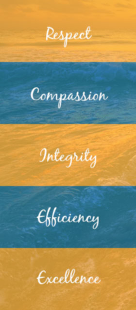 values-graphic