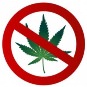 February is Marijuana Awareness Month