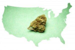 America's Marijuana Use