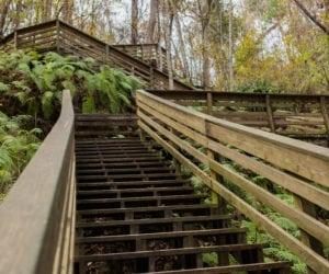 Gainesville Outpatient Substance Abuse Treatment