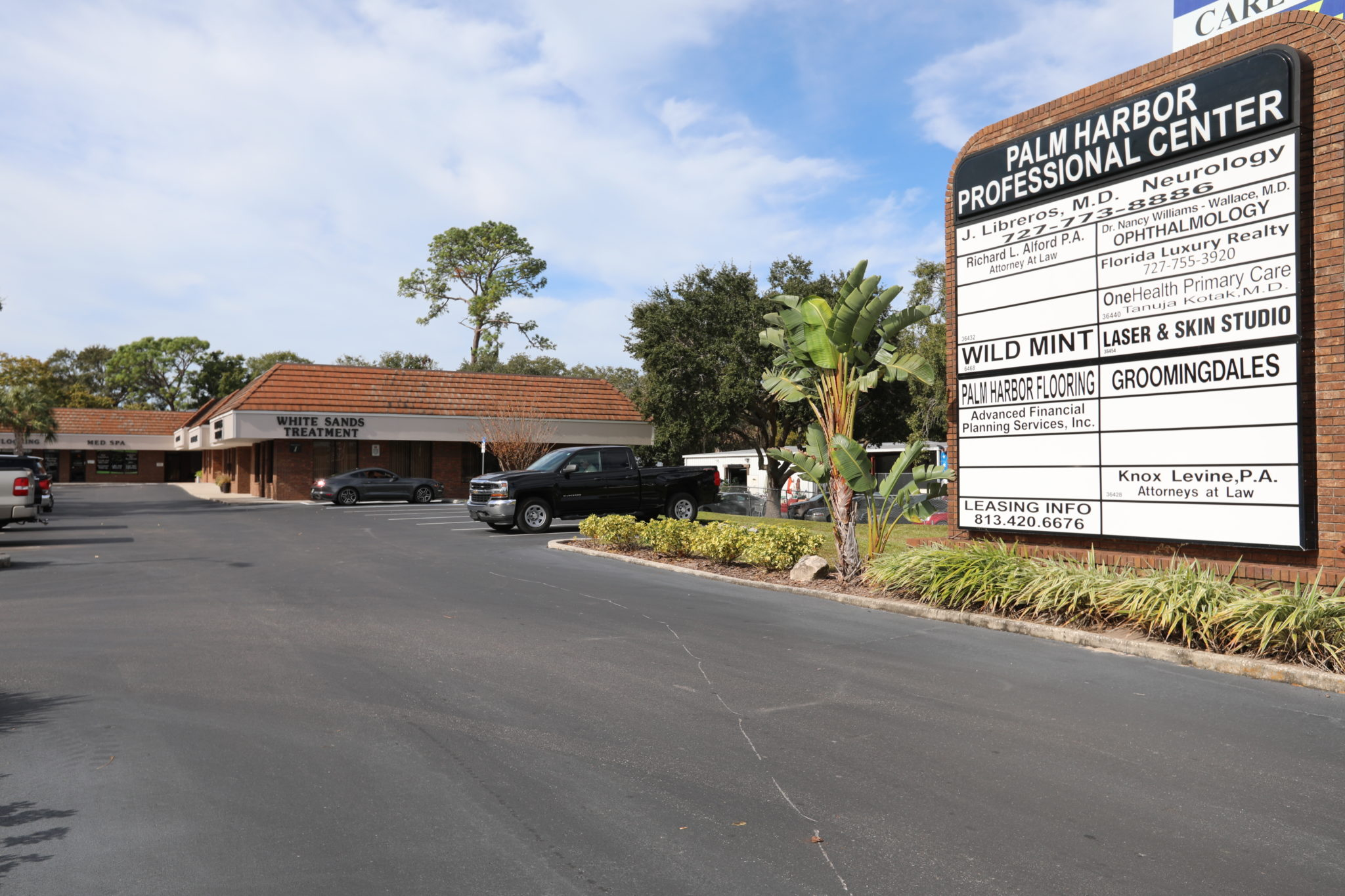 Palm Harbor drug rehab