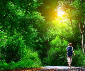 Life After Rehab: Best Hiking Spots in Orlando