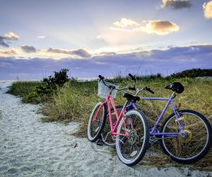 Life After Rehab: Top Ways to Get Outdoors and Enjoy Nature in Tampa
