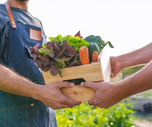 Life After Rehab: Farmers Markets in Tampa, FL | Healthy Eating & Addiction Treatment